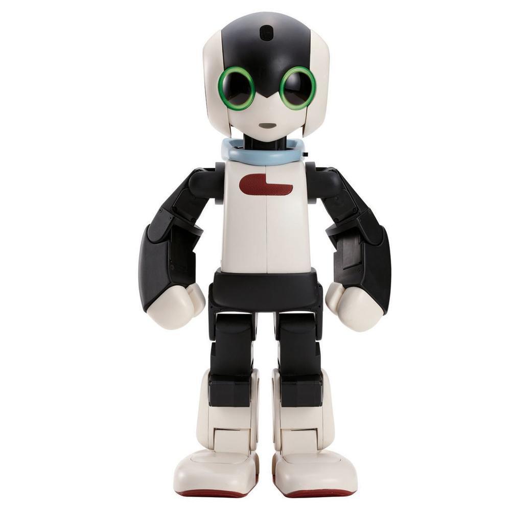 Robi, the DIY Robot